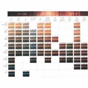 Schwarzkopf – Coloração Igora Color 10 – 60ml
